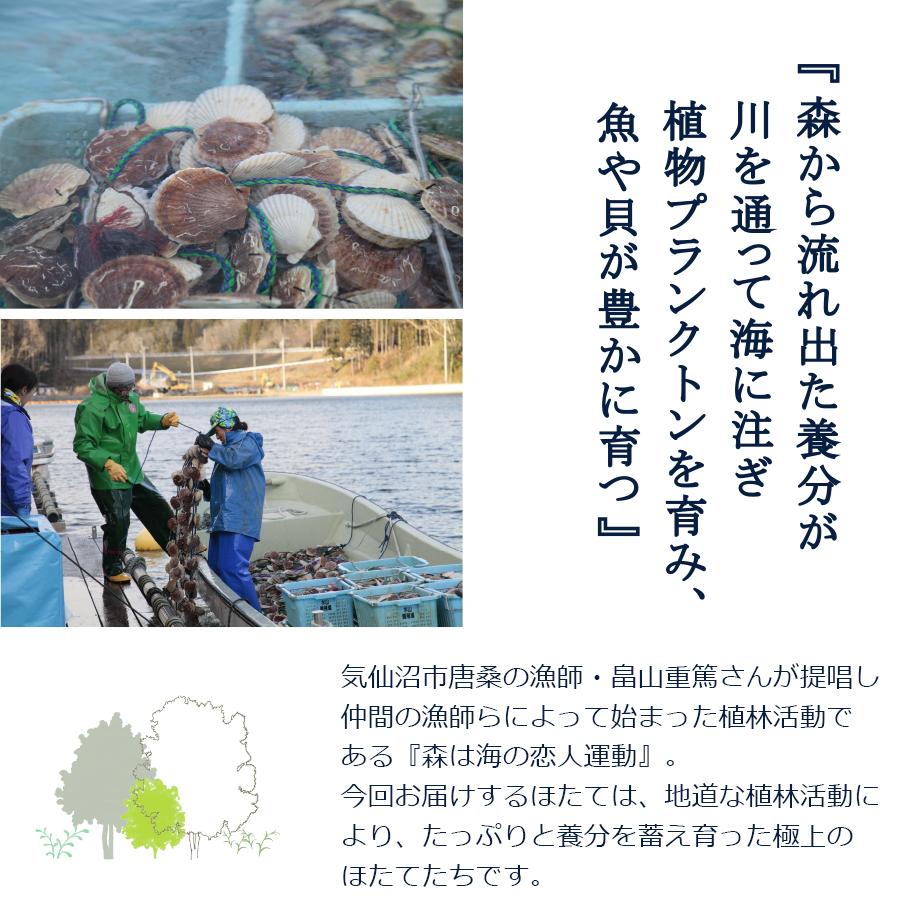 徳用 帆立貝柱 冷凍 (1kg) 水山養殖場 ほたて ホタテ 唐桑半島 水山養殖場が丹精込めて育てた ほたて貝柱