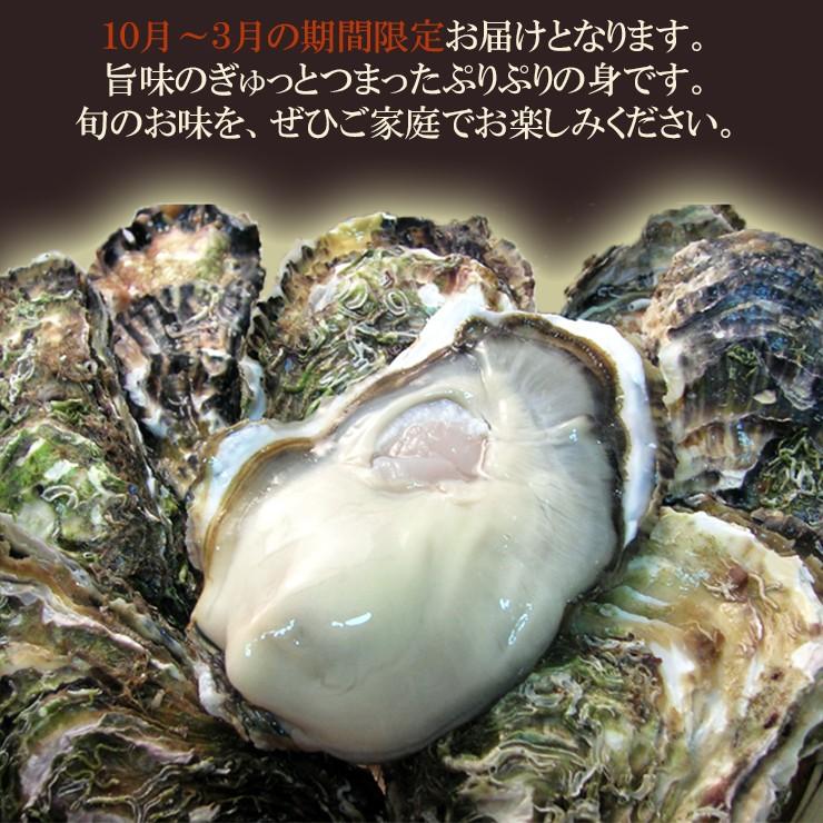 加熱食用 唐桑産もまれ牡蠣 (むき牡蠣) (400g) 唐桑漁協 むき牡蠣 旬 料理 食べ方説明書付き 宮城 気仙沼 東北