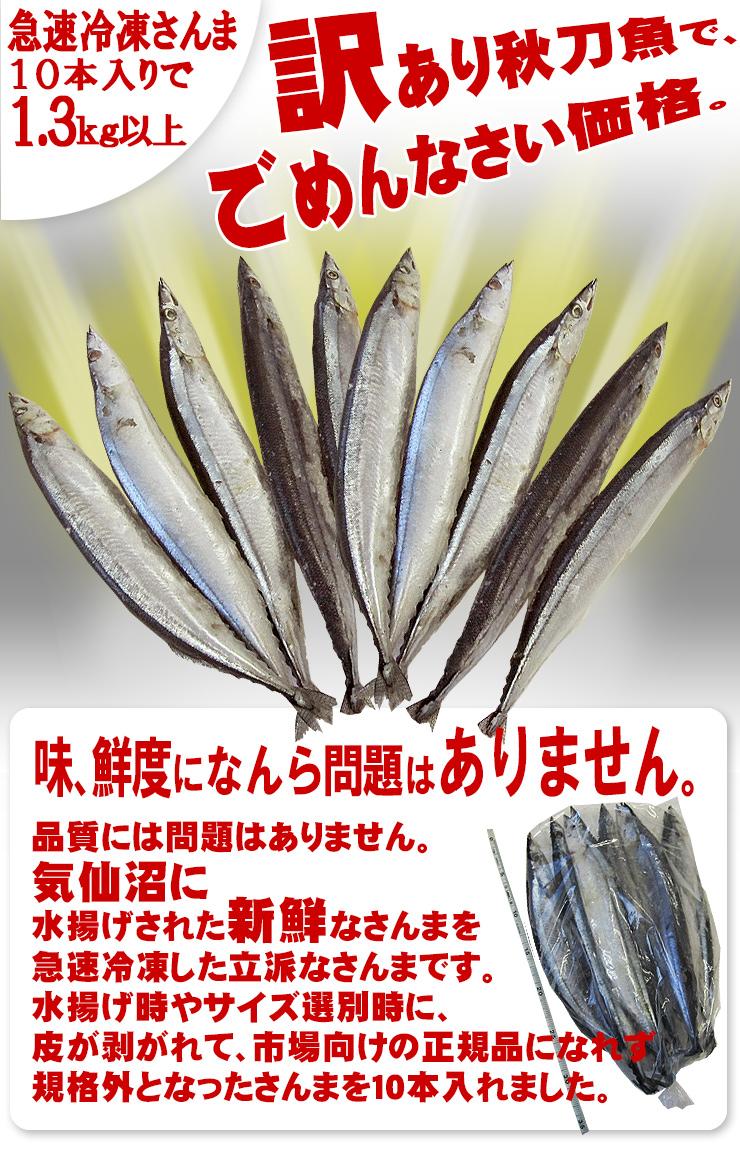 訳あり さんま 冷凍 【足利本店】 (10本(合計1.3キロ以上)) 気仙沼 三陸 秋刀魚 お取り寄せ