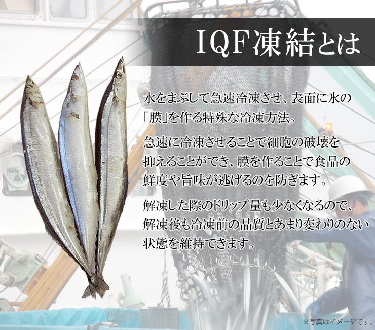 さんま 冷凍 8本 (1本130g以上)丸繁商店 IQF凍結 気仙沼 三陸 秋刀魚 お取り寄せ おかず
