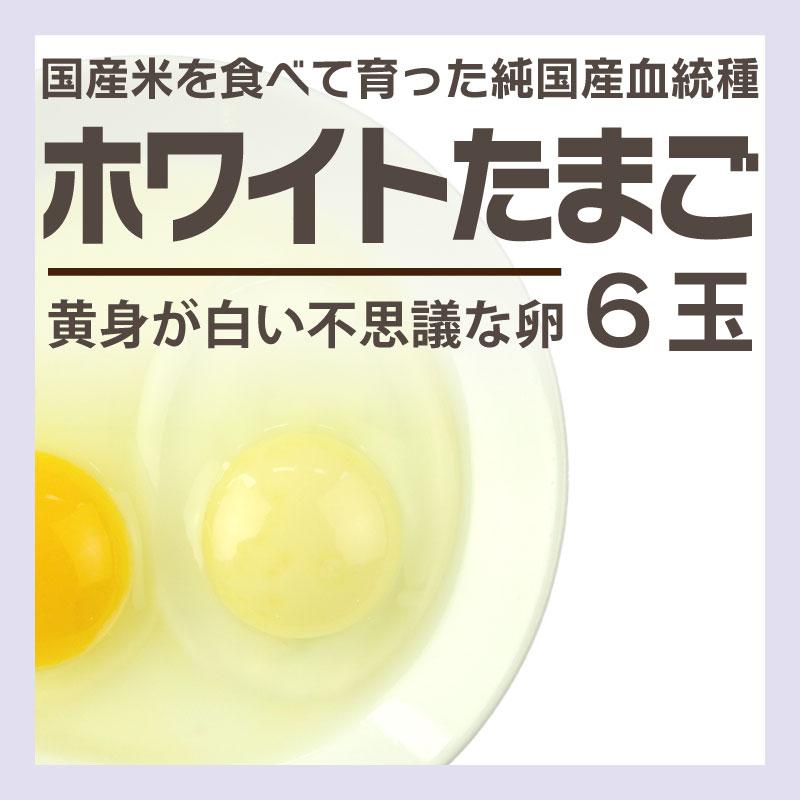 ホワイトたまご 6玉パック [東京] / たまご
