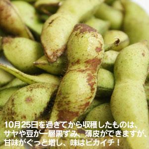 丹波篠山黒枝豆 約1kg [兵庫] 大内農場 / えだまめ 農家直送