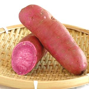 パープルスイートロード(紫芋)家庭向け規格 [新潟] 農プロデュースリッツ / さつまいも