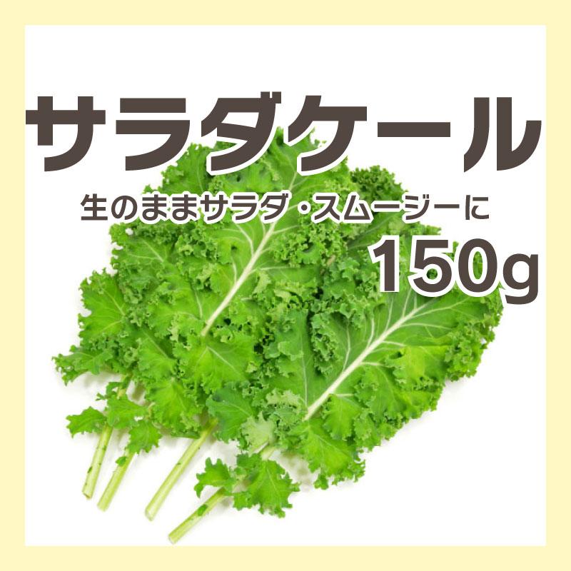 サラダケール10枚入 [宮城] / ケール ★生食可能なまろやかタイプ