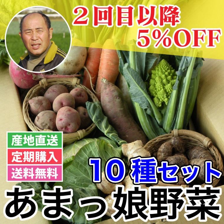 あまっ娘セット - 【定期 10種】三竹さんのあまっ娘野菜セット[愛知]