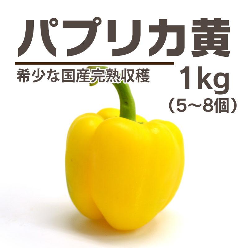 完熟収穫パプリカ 黄色[群馬] / パプリカ
