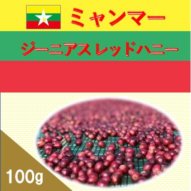 【数量限定商品】ミャンマー ジーニアス レッドハニー 100g (4/28〜発送)