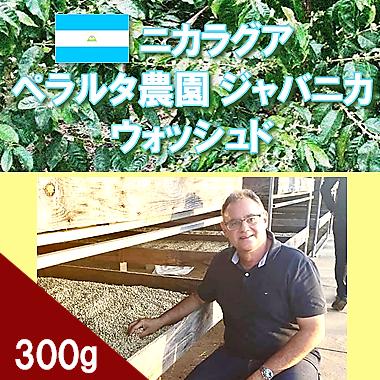 ニカラグア ペラルタ農園 ジャバニカ ウォッシュド 300g