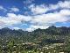 【通販数量限定商品】(9/28〜発送) インドネシア コモドドラゴン フローレス島チョロル村 100g