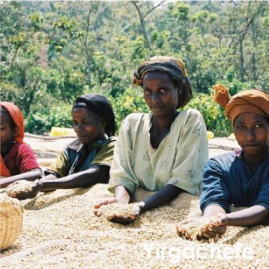 エチオピア モカ イルガチェフG2 100g