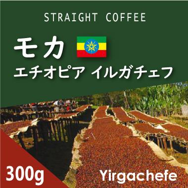 エチオピア モカ イルガチェフG2 300g