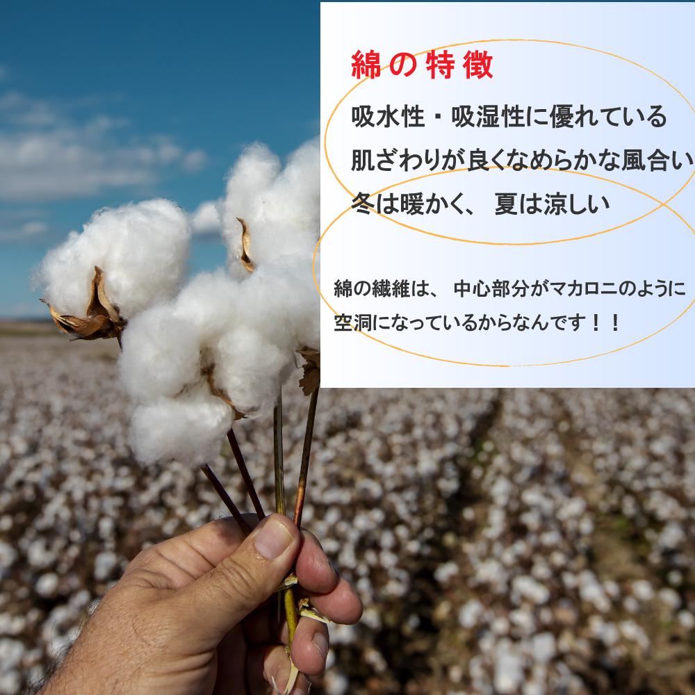 一日中履けるソフト着圧ソックス 綿混素材 日本製