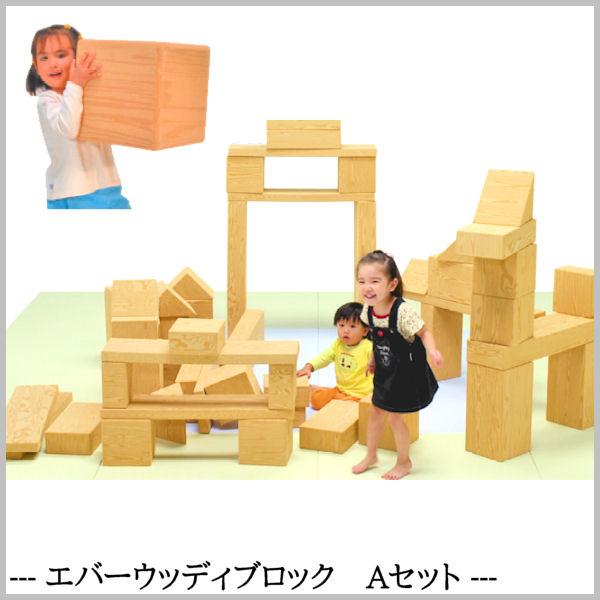 子ども用おもちゃ EVA樹脂製 【エバーウッディブロック Aセット】 食品衛生法合格品 知育玩具