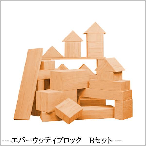 子ども用おもちゃ EVA樹脂製 【エバーウッディブロック Bセット】 食品衛生法合格品 知育玩具