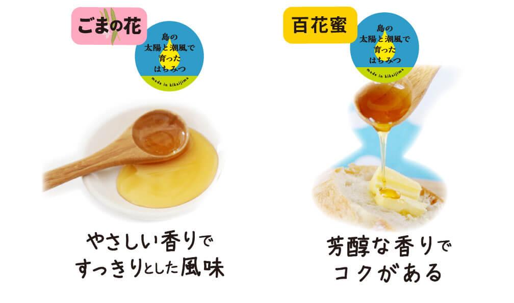 【味比べ】 喜界島はちみつ 2種 ごまの花・百花蜜