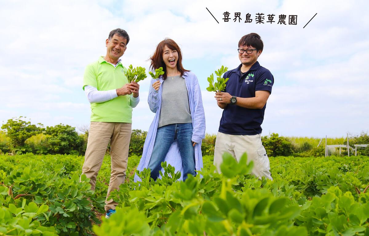 【お得なセット 】松井美緒さんと一緒に作りました!喜界島 長命草茶 5包×4 【送料無料】