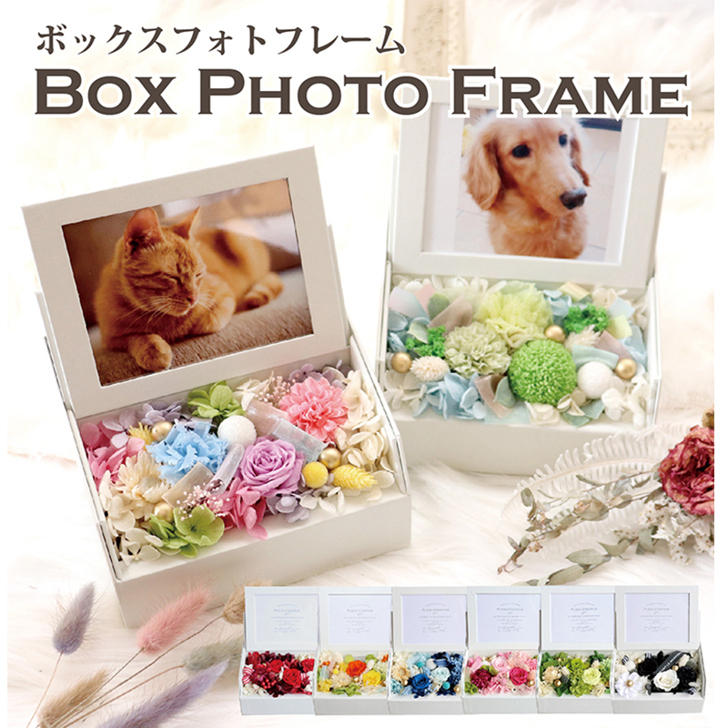 【boxphoto】ボックスフォトフレーム \送料無料/