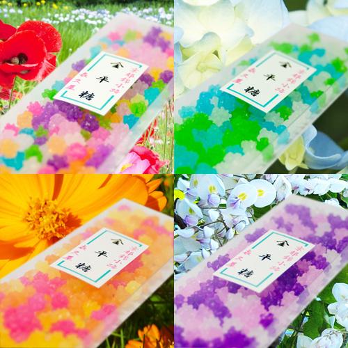 金平糖4種BOXセット
