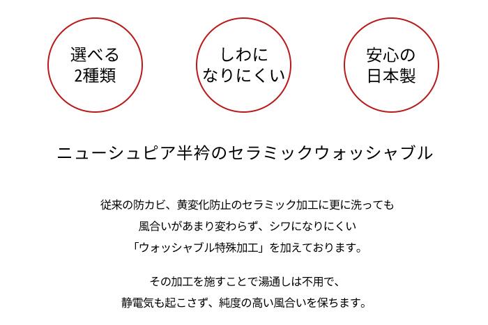 半襟 正絹 ニューシュピア 通年用 夏用 絽 選べる2タイプ 洗える 日本製>