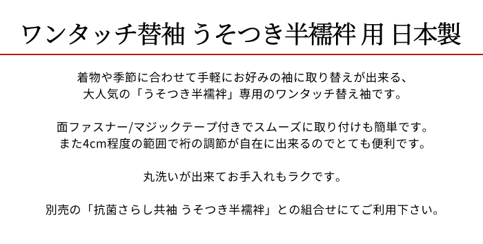 替袖 夏 絽 友禅 撫子 青緑色系 ぼかし 替え袖 別売のうそつき襦袢専用>