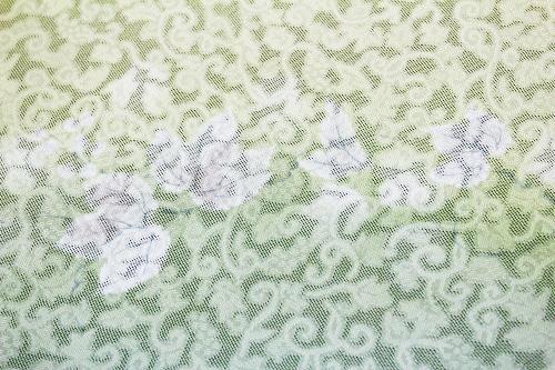 正絹の夏物紋紗着尺「流水ぼかし 唐花の地紋に京友禅蔦」