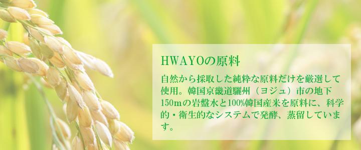 韓国焼酎 ファヨ HWAYO 25度 500ml 火堯【常温・冷蔵可】