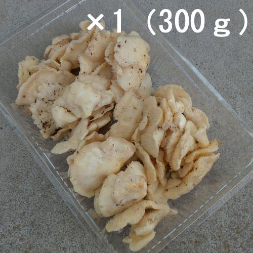 天然 ぶなはり茸(ブナハリタケ)