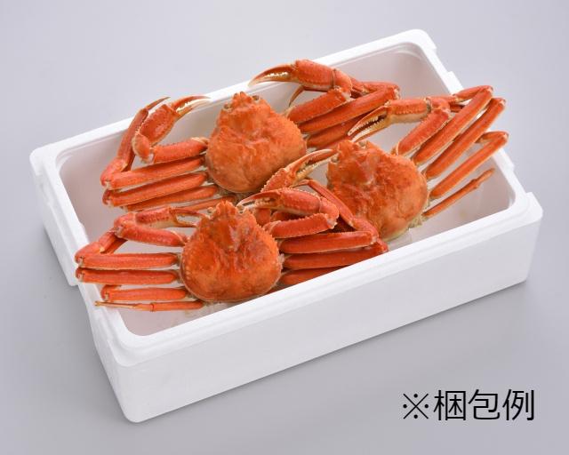 冷凍ボイル本ズワイガニ  Mサイズ1杯(約560g)