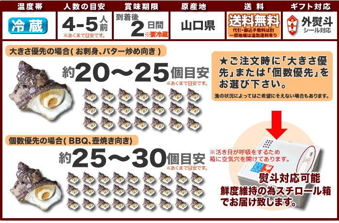 日本海産天然さざえ「活サザエ約2kg/冷蔵」【送料無料】