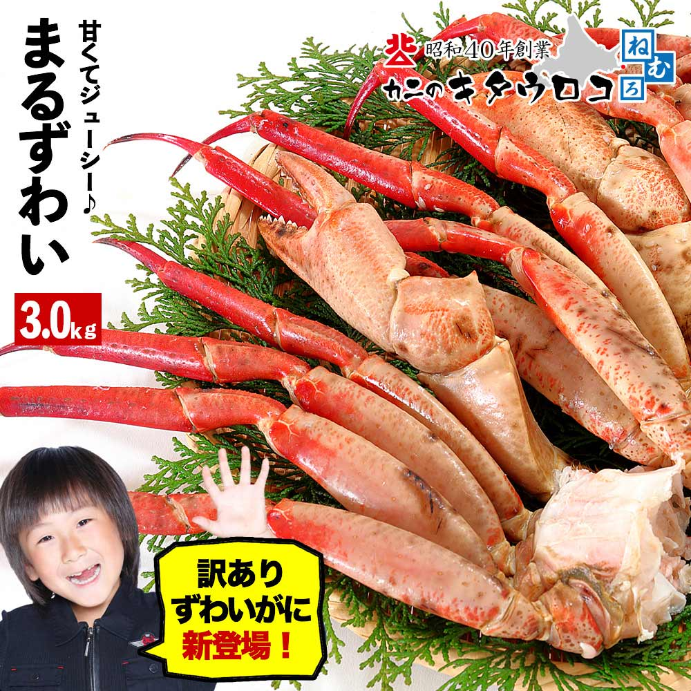 【送料無料】 ボイル まるずわいがに 脚 3kg 7〜10肩入 かに カニ 蟹 ズワイガニ ずわい蟹 足 鍋 取り寄せ ギフト