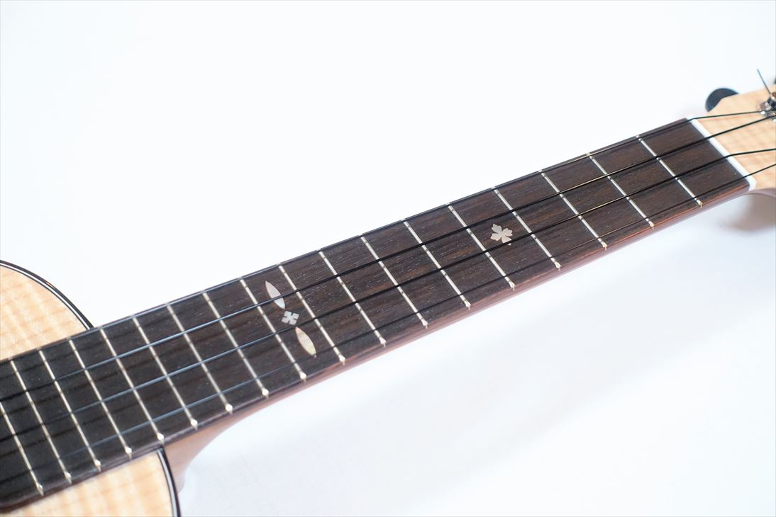 【F Series】FCMP-DX コンサートサイズ
