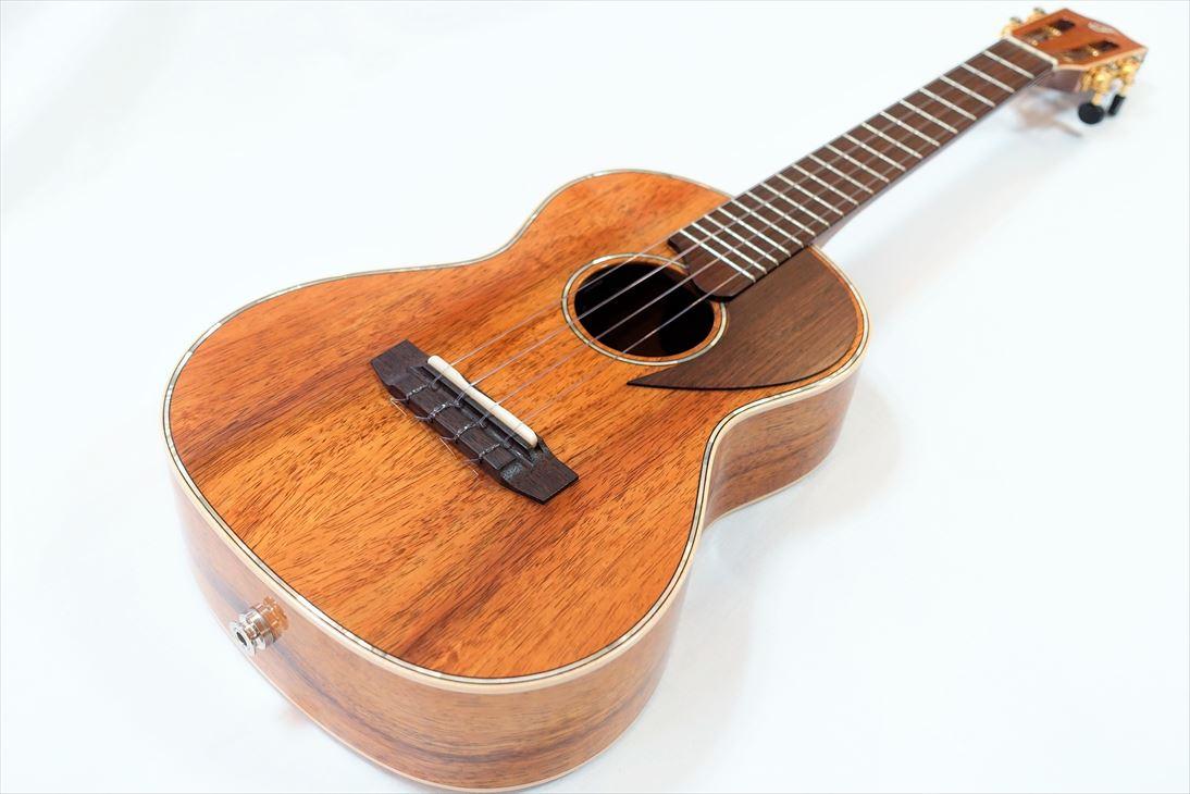 【F Series】FTK-DA1 DAICHIモデル テナーサイズ(P.U.付)