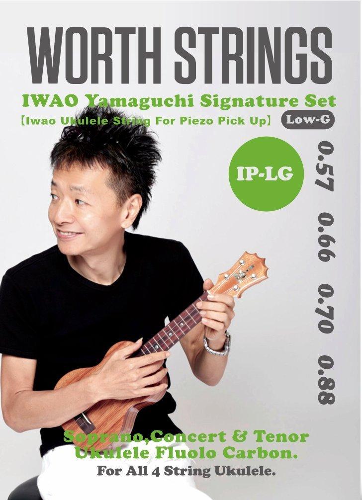 Worth 弦 (IP-LG : IWAO ピエゾ・ピックアップ対応 Low-Gセット)※ネコポス対応商品