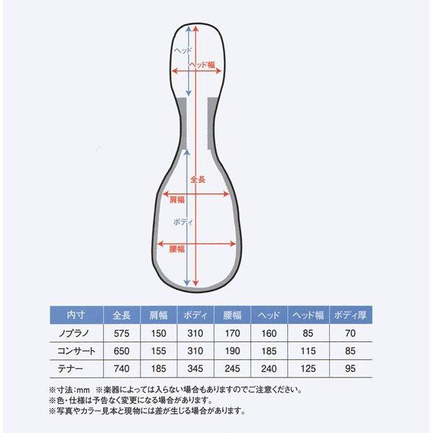 【ウクレレケースの最高峰】アランフェス ウクレレカーボンケース(テナー用)