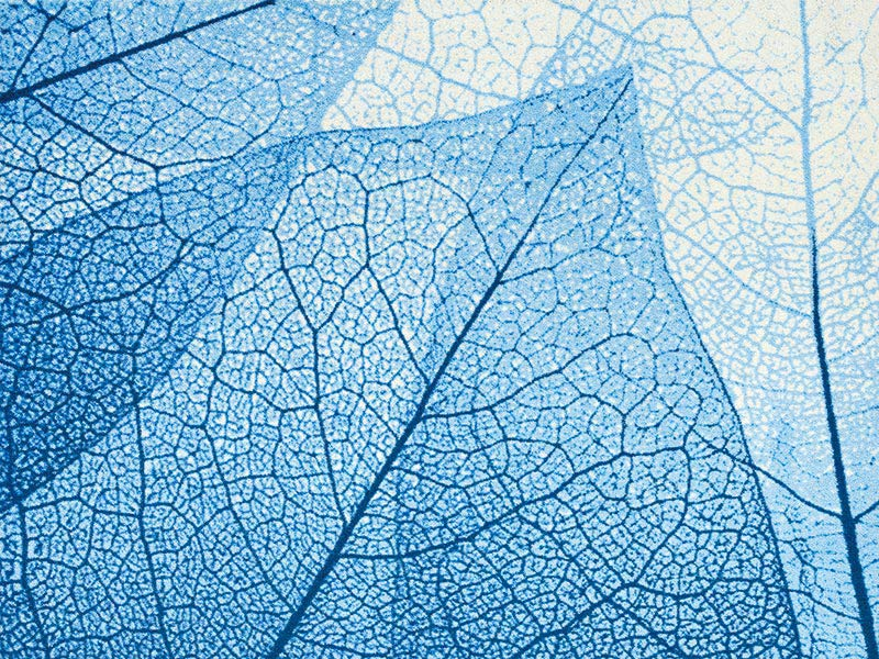 【受注生産】玄関マット オフィス用マット Office & Decor Blue Veins / ブルーベインズ 120×160cm