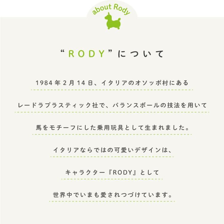 玄関マット 室内用 ロディ Retro Rody 45×75cm