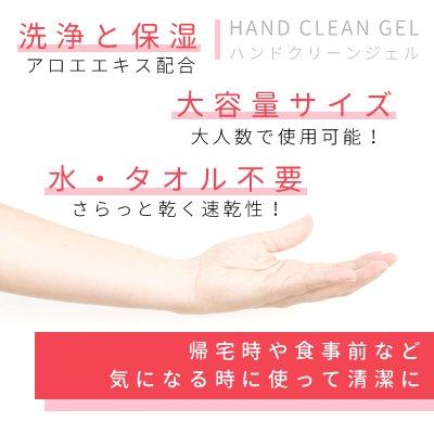 HAND CLEAN GEL ハンドクリーンゲル 2本セット