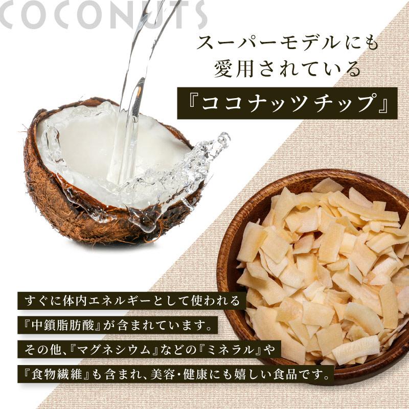 【区分A】ココナッツチップ 100g ココナッツ ヤシの実 フルーツチップ