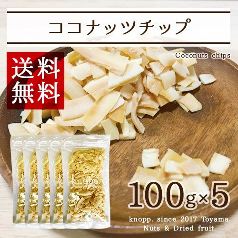 【区分A無料】ココナッツチップ 100g×5袋セット ココナッツ ヤシの実 フルーツチップ【ポイント2倍】