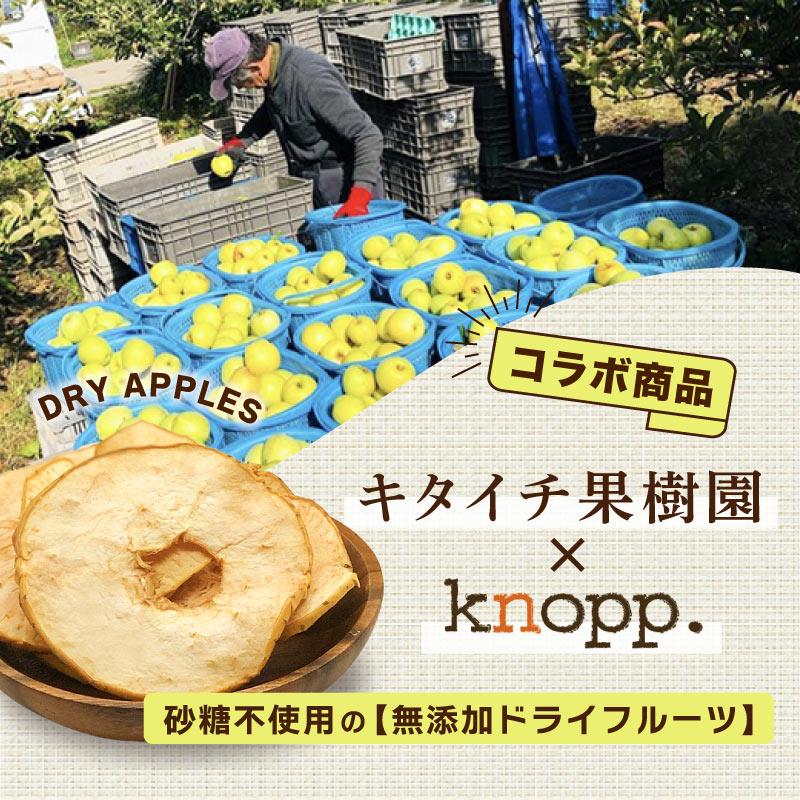 【シーズン終了】【メール便】キタイチ復興りんご(王林) 30g 単品 りんごのドライフルーツ 長野産 無添加 農家直送 減農薬 皮ごと食べれる【次シーズンまでお待ち下さい】