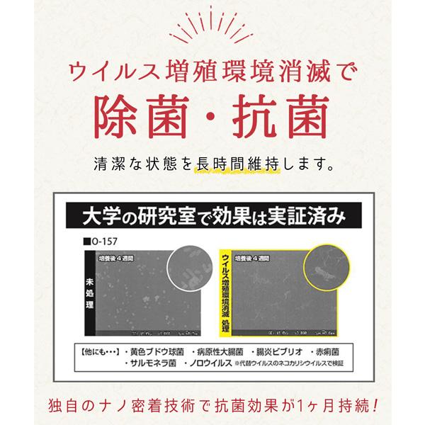 【区分A無料】除菌スプレー ウイルス増殖環境消滅 500ml 6本セット 染めQテクノロジィ