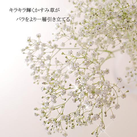 キラキラピンクローズ10本とキラキラかすみ草のアレンジメント