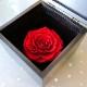 赤薔薇1輪 プリザーブドフラワー BLACK CUBE BOX
