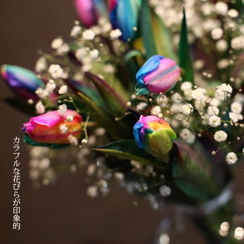 レインボーチューリップ10本とキラキラかすみ草の花束