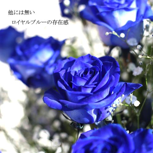 青いバラ10本とキラキラかすみ草のアレンジメント
