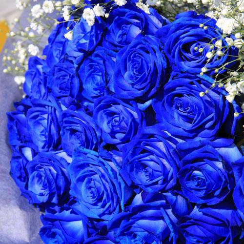 青いバラ 20本の花束