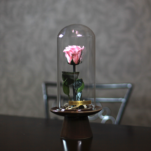 ピンクローズ プリザーブドフラワー ガラスドーム