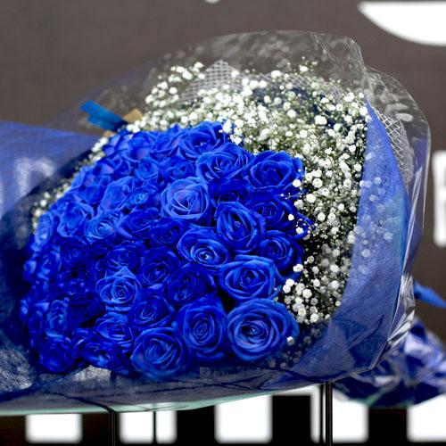 青いバラ 50本の花束