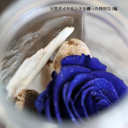 青いバラ プリザーブドフラワー メイソンジャーフラワー