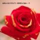 青いバラと赤薔薇ゴールドラメのミニアレンジ